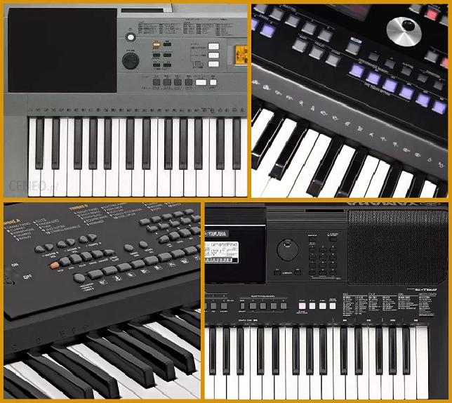 Instrumenty do wypożyczenia DomPełenMuzyki